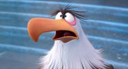 Mighty Eagle's shocked