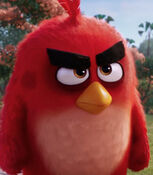 Red in The Angry Birds Movie-0