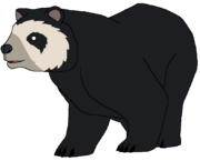 Andy the Andean Bear.png