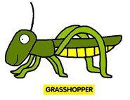 Emmett's ABC Book Grasshopper