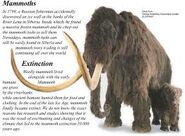 Extinct Mastodons and Mammoths
