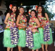 Hawaiian-fashion