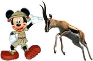 Mickey meets Thomson's Gazelle