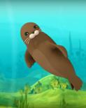 Octonauts harbor seal