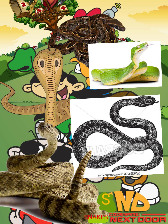 Codename: Snakes Next Door