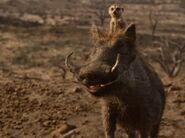 2019 Timon And Pumbaa