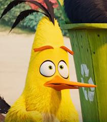 Chuck (Angry Birds)