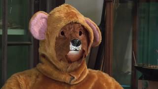Hasselhoff the Bear