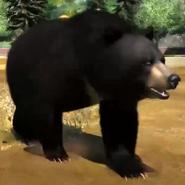 Himalayan-black-bear-zootycoon3