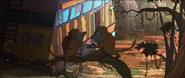 TWT Baboons
