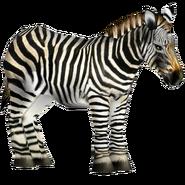 Zoo Tycoon Hartman's Zebra