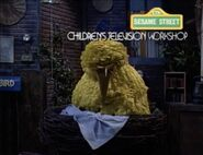 Big Bird mutters things about Montana in his sleep at the end of episode 2880