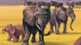 Jumpstart Elephants