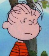Linus-van-pelt-its-magic-charlie-brown-1.32