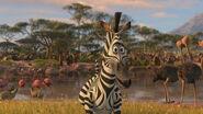 Madagascar2-disneyscreencaps.com-2818
