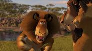Madagascar2-disneyscreencaps.com-3221