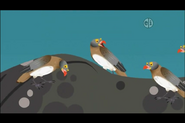 Red-Billed Oxpecker (Wild Kratts)