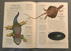 Reptiles (Over 100 Questions and Answers to Things You Want to Know) (3).jpeg