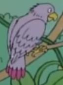 Batw 041 parrot