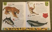 Endangered Animals Dictionary (23)