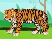 Rileys Adventures South China Tiger
