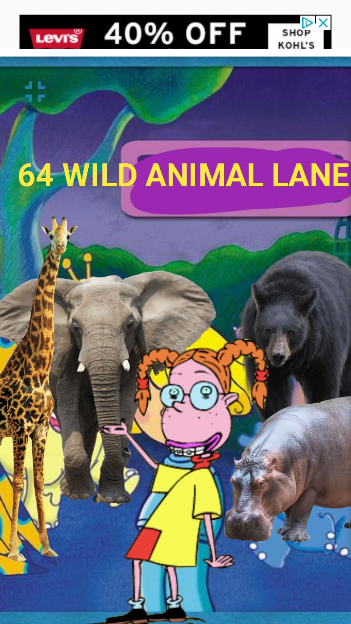 64 Wild Animals Lane