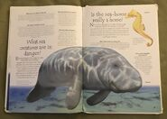 Endangered Animals (Over 100 Questions and Answers to Things You Want to Know) (8)