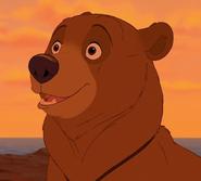 Kenai the Bear