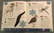 Polar Animals Dictionary (6)