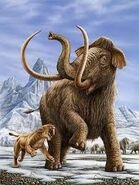 Smilodon Attacking Woolly Mammoth