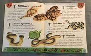 Snake Dictionary (2)
