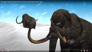Zoo Clues Mammoth