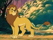 Rileys Adventures Barbary Lion
