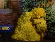Big Bird sleeping and dreaming in episode 2534