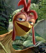 Chicken Joe in Surf's Up