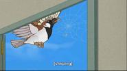 MSB Rides Again Sparrow