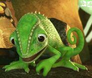 JungleBunch Chameleon
