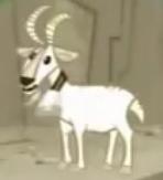 MGPaM Goat