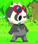 Pancham in the Pokemon Shorts