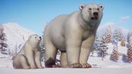 Planet Zoo Polar Bear