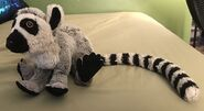 Ringo the Ring-Tailed Lemur