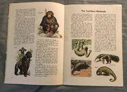 A Golden Exploring Earth Book of Animals (6)