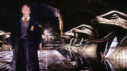 Harry in the chamber of secrets