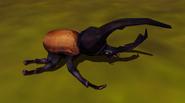 Hercules Beetle IC