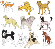 Hetalia Dogs