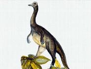 Ornithomimus-encyclopedia-3dda