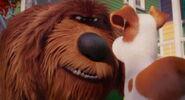 Secret-life-pets-disneyscreencaps.com-7851