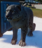 SnowLeopardScreenscap