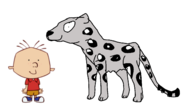 Stanley Griff meets Snow Leopard
