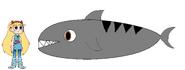 Star meets Tiger Shark
